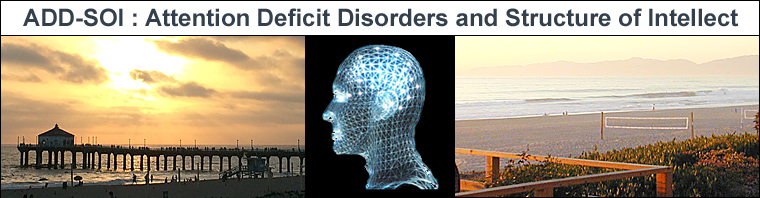 ADD-SOI Center - Attention Deficit Disorders and Structure of Intellect - Manhattan Beach California